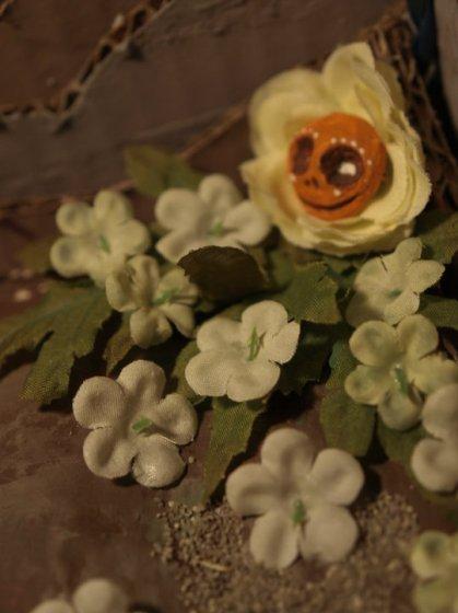 flower head in flower bed